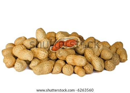 Pile of peanuts with one opened against white background