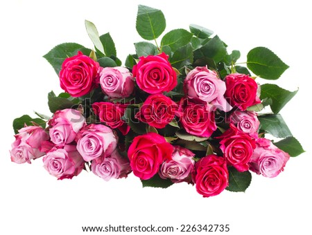 pile of pink rose flowers   isolated on white background