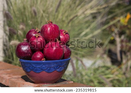 Pile of pomegranates with blurred outdoor background - stock photo