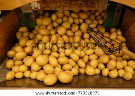 Pile of potatoes, backgrounds