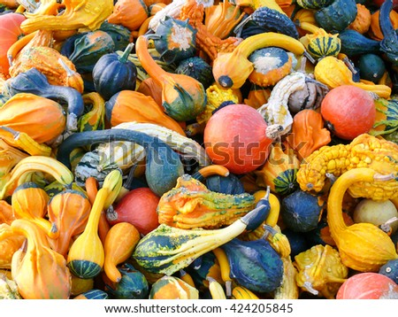Pile of pumpkins at an outdoor market - stock photo