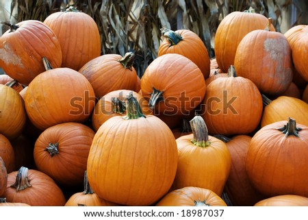 Pile of pumpkins - farmers market - stock photo