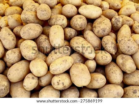 pile of raw potatoes - stock photo