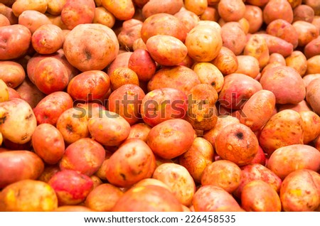 pile of red potatoes in a market closeup - stock photo