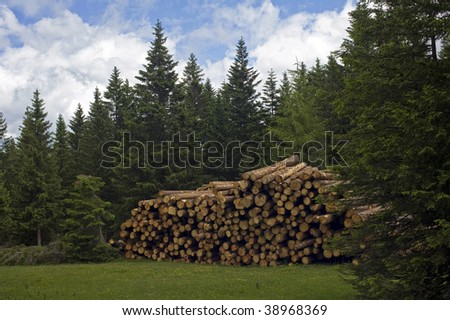 Pile of sawed wood in Dolomites, Italy. - stock photo