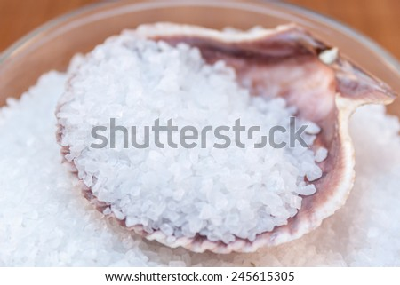 pile of sea salt in shell  - stock photo