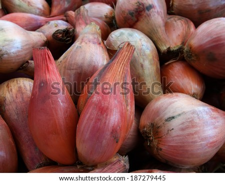 Pile of Shallots at the farmers market - stock photo