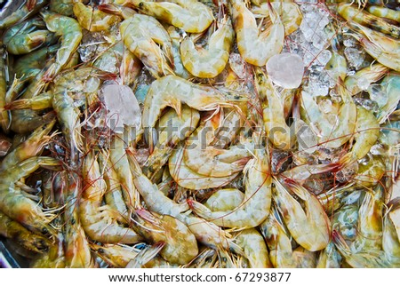 Pile of shrimp on ice tray in fresh market , closeup background - stock photo
