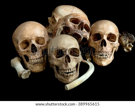 Pile of skull, on black background, Still Life style