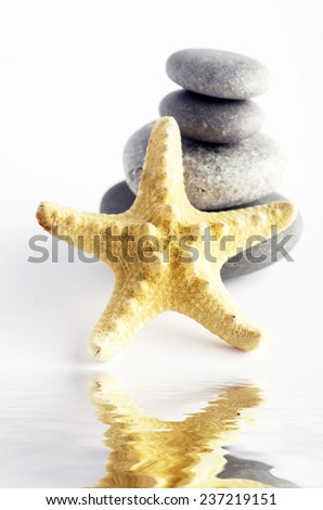 pile of stones and sea star closeup on white background - stock photo
