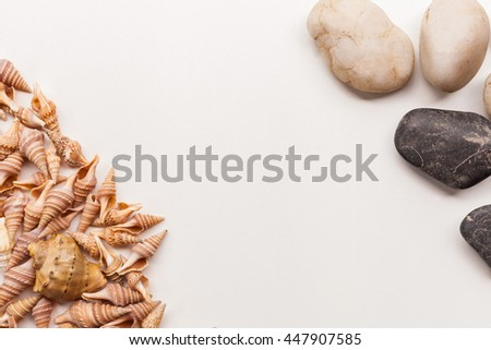 Pile of stones, sea shells flat lay closeup on white background. Tourism and travel holiday theme with free space. - stock photo