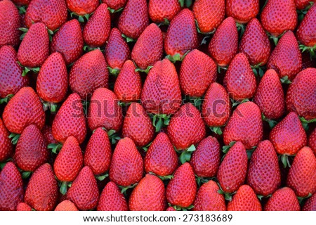 Pile of strawberries fresh fruit background texture. - stock photo