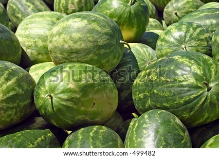 Pile of Sweet Summer Watermelons - stock photo