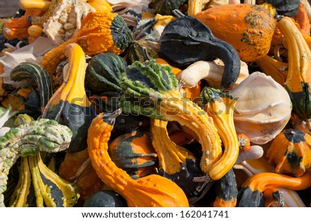 Pile of the Squash