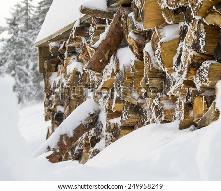 Pile of timber logs - stock photo