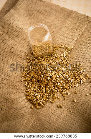 Pile of washed out gold nuggets and glass jar on burlap - stock photo