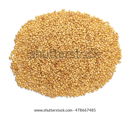pile of wheat kernels isolated on white