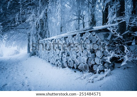 Pile of wood covered with fresh snow and rime - stock photo