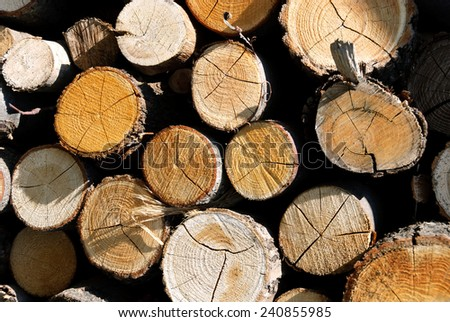 pile of wood for the fireplace - stock photo