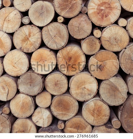 Pile of wood logs storage for industry - stock photo
