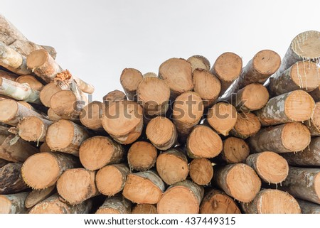 Pile of wood, Raw wood for apply firewood as a renewable energy source. - stock photo