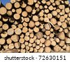 pile of wooden logs background - stock photo