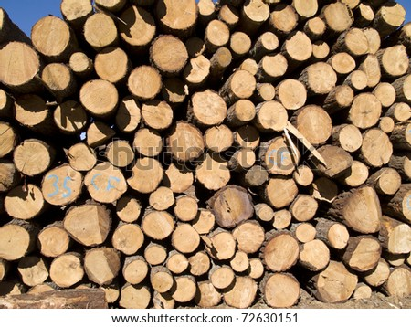 pile of wooden logs background