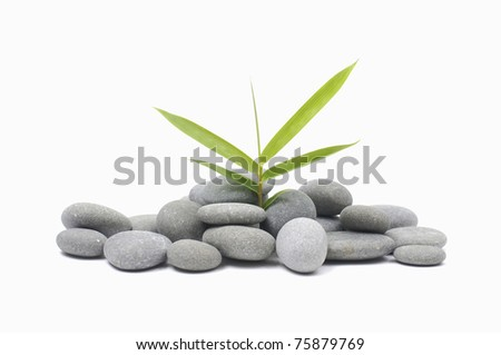 Pile stones with bamboo - stock photo