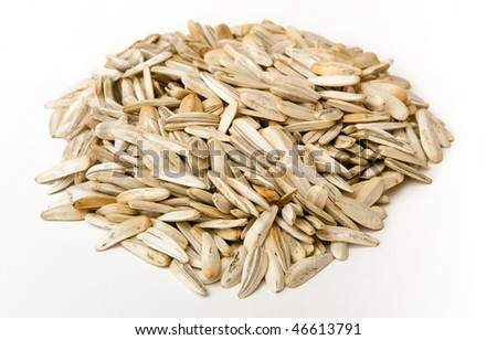pile sunflower seed on white