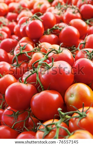 Piles of green vine ripe red tomatoes at the market - stock photo