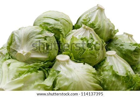 Piles of iceberg lettuce - stock photo