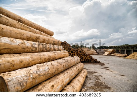 Piles of logs in a timber yard - stock photo