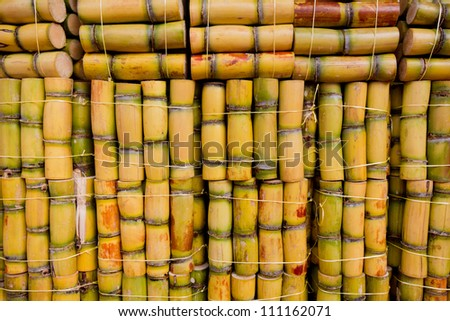 Piles of sugar cane on market ready to eat