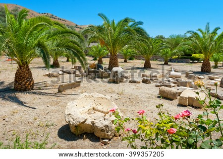 Pillars and columns at palm grove area in Gortyna. Crete, Greece - stock photo