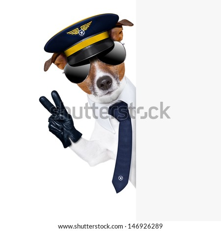 pilot captain dog behind a banner with peace fingers - stock photo