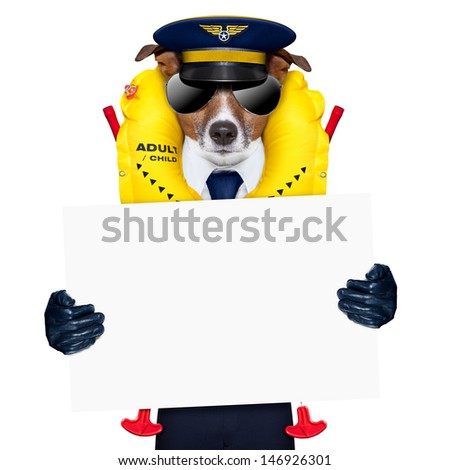 pilot captain dog wearing  emergency life  vest holding a placard - stock photo