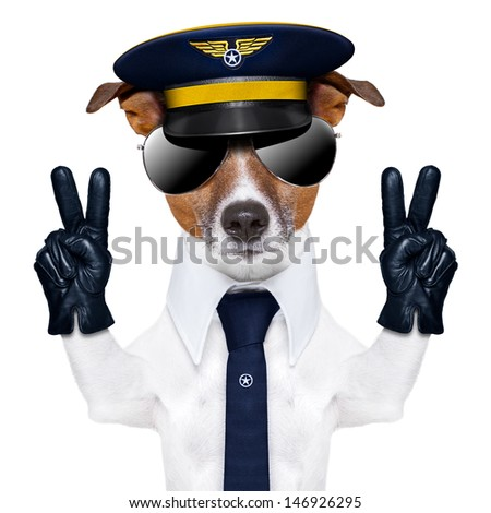pilot captain dog with peace fingers and a blue tie - stock photo