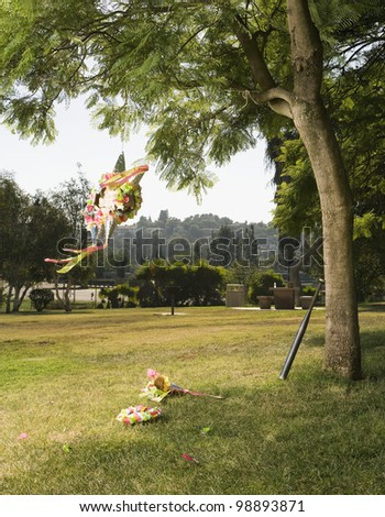 Pinata hanging on tree in park - stock photo