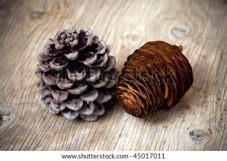 Cedar Pine Cones Pine And Cedar Cones Stock