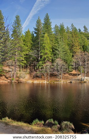 Pine and fir trees grow around Lake Fulmor on Mount San Jacinto in Southern California. - stock photo