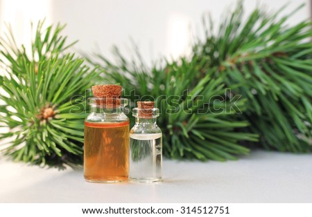 pine aroma oil extract natural in cosmetic bottles aromatherapy setting - stock photo