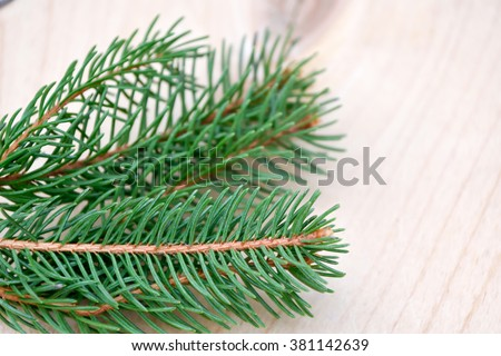 pine branch on wood background.