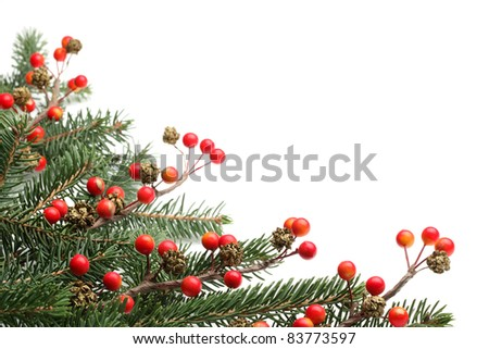 Pine branches and berries for Christmas border. - stock photo