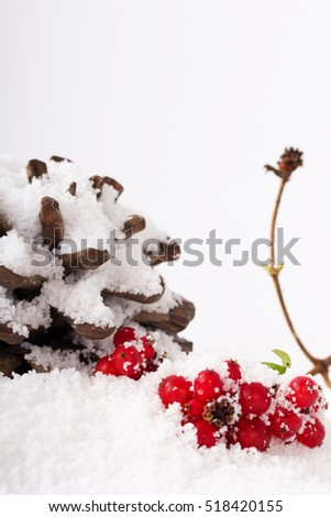 Pine cone and red berries covered in white snow