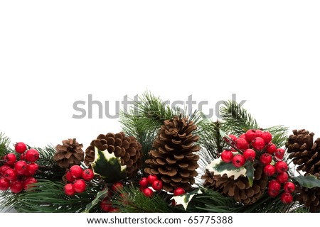Pine cones and holly berries on bough with white background, winter  border - stock photo
