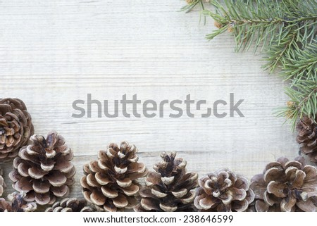 Pine cones and the fir branch close up - stock photo