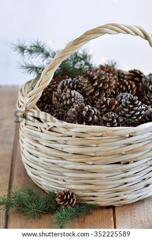Pine cones in a basket - stock photo