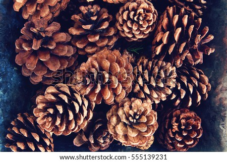 Pine cones in an old tin tray