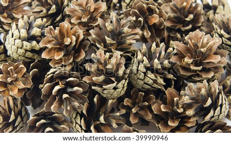 Pine cones. May be used as background - stock photo