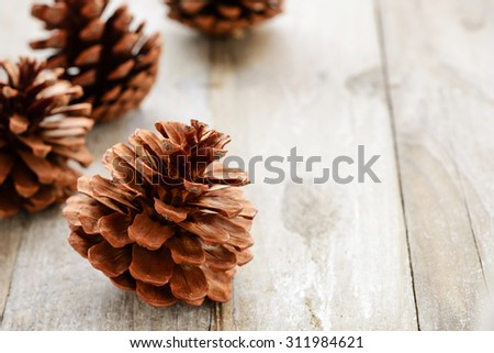 pine cones on the wooden board, (large depth of field, taken with tilt shift lens)